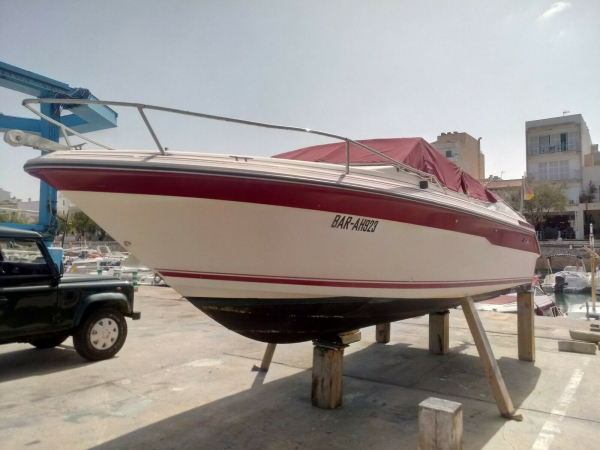 Sea Ray Overnight mit neuem Motor Mercruiser 5.7 V8
