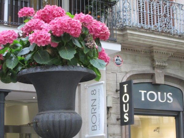 Shopping in Palma and then trip to Valldemossa